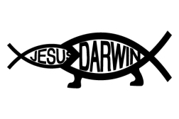 darwin-vs-jesus-helvetica